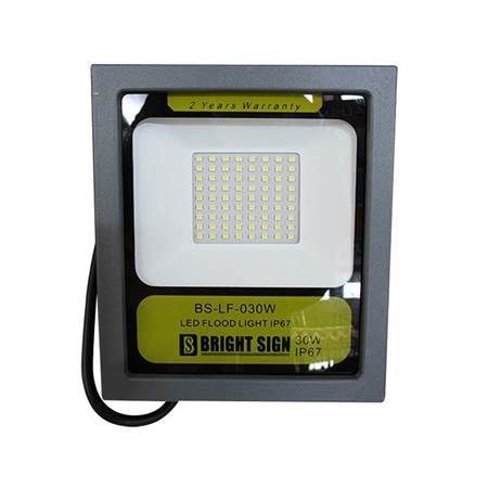Picture of BS-4092 30W LED FLOODLIGHT/1*20