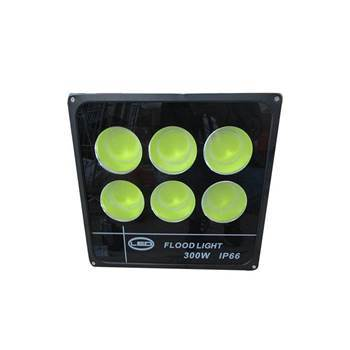 Picture of BS-4112 300W COB LED FLOODLIGHT/1*5
