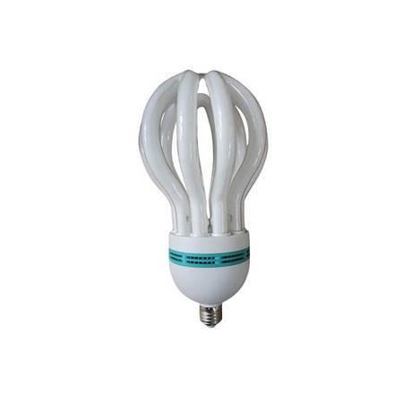 Imagem de 105W(F)B22energy saver/1*12