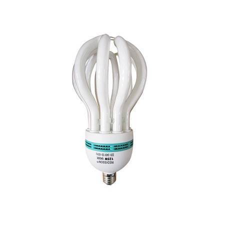 Picture of 125WE27energy saver/1*12